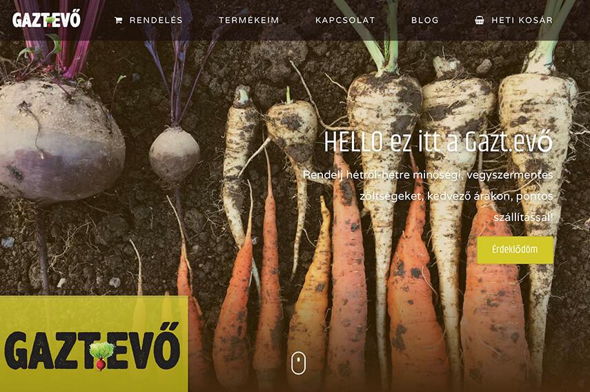 Új weboldal - az első benyomás
